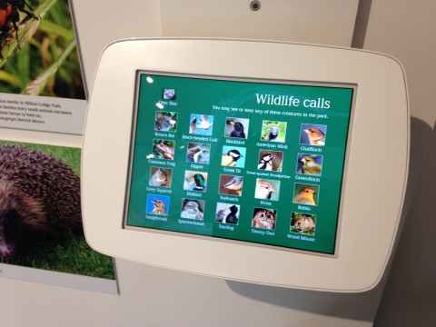 Wildlife interactive iPad